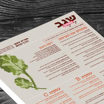 עיצוב תפריט למסעדת שגב